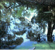 Stockton Bight Wetland by Bernadette Smith (c) by smithrankenART