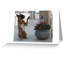 Tyler Salutes the American Flag Greeting Card