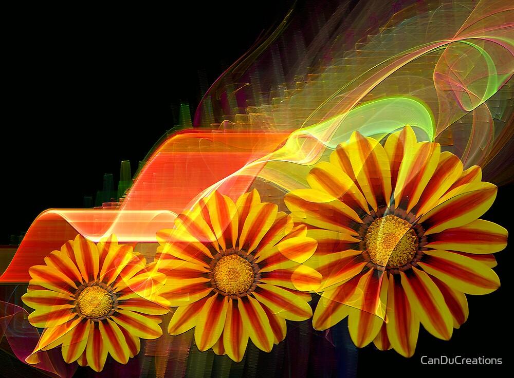Summer joy by CanDuCreations