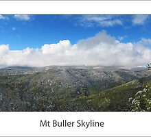 Buller Skyline by shambrick