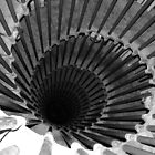 Spiral Staircase in Lublijana by Donna Corless