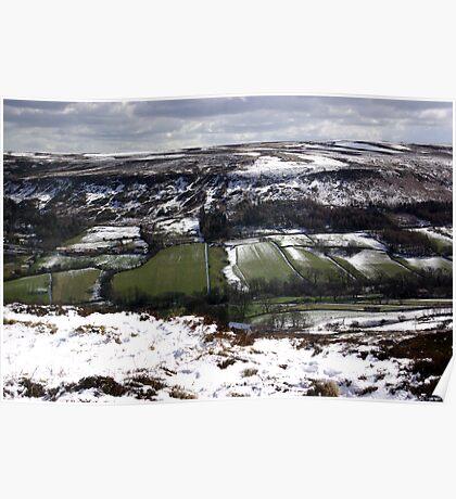Farndale - North Yorks Moors Poster