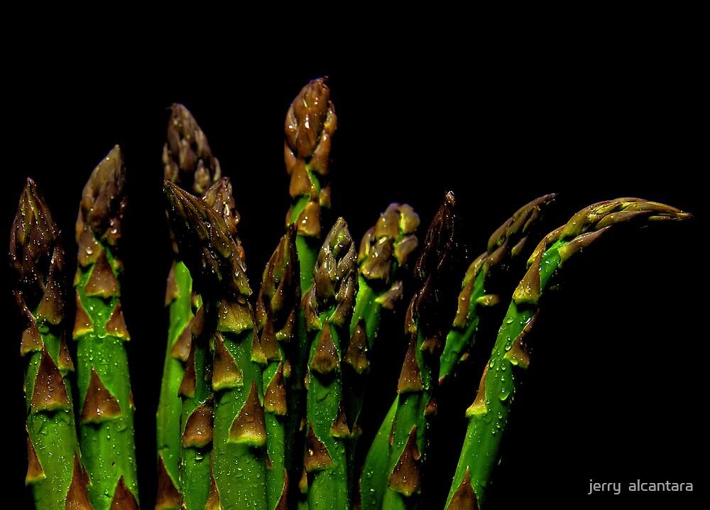 Asparagus by jerry  alcantara