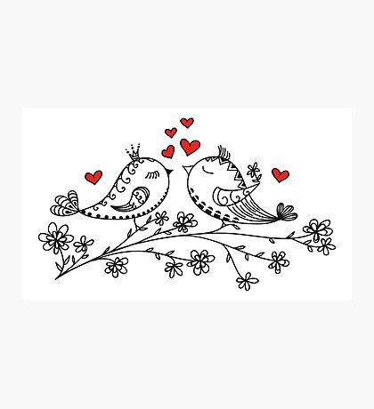 LOVE BIRDS, VALENTINE`S DAY, HEARTS, COLOR Photographic Print