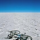 Salar de Uyuni & bicycle by Syd Winer