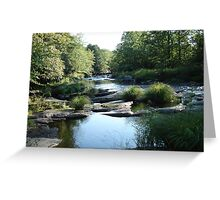 The Lackawanna River Greeting Card