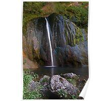 Cascade de Courmes - Gorge du Loup Poster