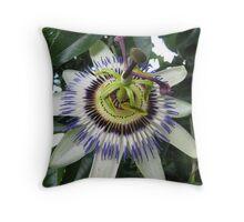 Passiflora caerulea Throw Pillow
