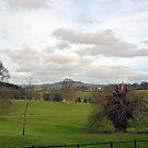View At Escot Devon UK by lynn carter