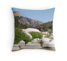Still River Throw Pillow