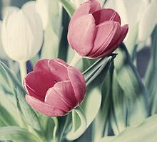 Twin Tulips in Pastel Pink by micklyn