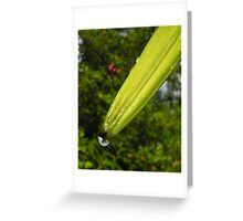 Drip off the tip. Greeting Card