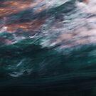 The Four Elements by Nikki Trexel