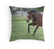 Food on the fly Throw Pillow