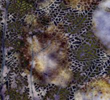 Shells #9i - SUNLIGHT THROUGH WATER Sticker
