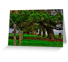 """Along the Fenceline"" Greeting Card"