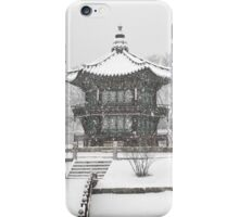 Ice Cold Palace In Seoul iPhone Case/Skin