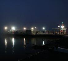 Foggy Ferry by Dave  Hartley