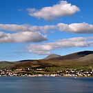 Dingle by Donncha O Caoimh