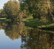 Rose and Pavilion Ponds by Anatoliy Spiridonov