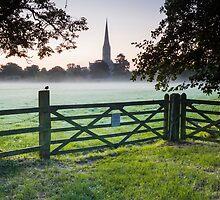 Salisbury cathedral at dawn by Julian Elliott