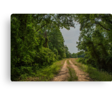 On A Country Road Canvas Print