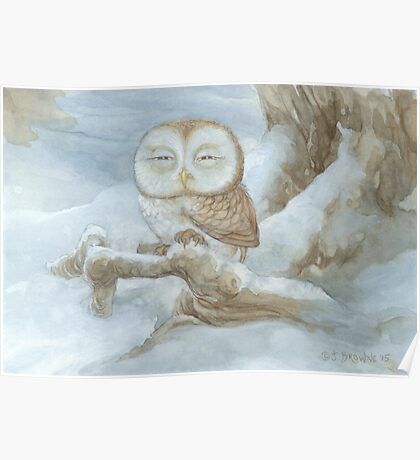 Sleepy Owl Poster