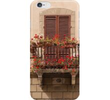 Sienese Window iPhone Case/Skin