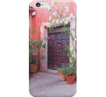 Roussillon Door iPhone Case/Skin
