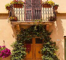 Doorway to Pienza by Julian Elliott