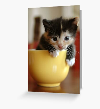 macchiato in tazza (Meg in the cup) Greeting Card