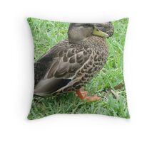 chillin like a duck Throw Pillow