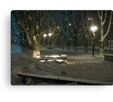 Winter Bench 5 Canvas Print