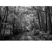 Country Walk Photographic Print