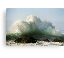 Dance Wave...the gift Canvas Print
