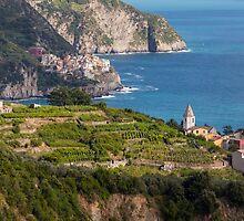 Cinque Terre vineyards by Julian Elliott