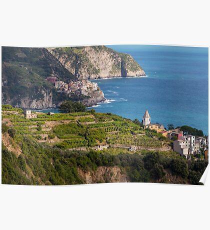 Cinque Terre vineyards Poster