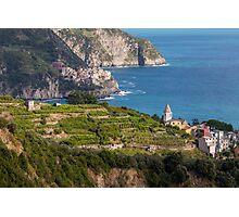 Cinque Terre vineyards Photographic Print