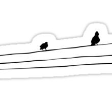birds Sticker