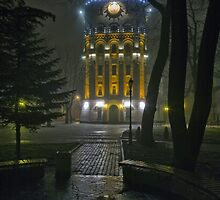 Water Tower At Night 2 by fine