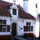 Het Veerhuis - St Amands by Gilberte