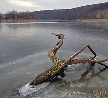 Sabarov Dam Vinnitsa 2 by fine