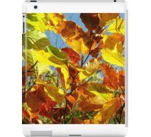 Autumn Colours, Wiltshire iPad Case/Skin