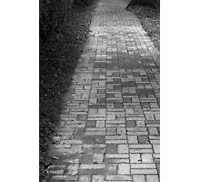 Walkway Photographic Print