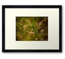 Kisses. Framed Print