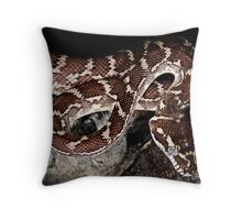 Rough Scaled Python [Morelia carinata] Throw Pillow