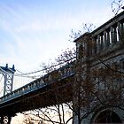 Brooklyn Bridge N.Y. by soulphoto