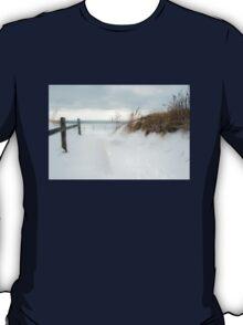 A Snowy Invitation T-Shirt