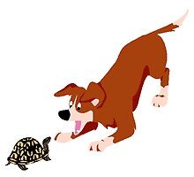Dog And Turtle by kwg2200