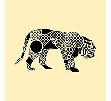 sumatran tiger profile Photographic Print